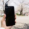 iPhone7Plus+スマホレンズセット「PL-A4」とミラーレスカメラで散りかけの桜を撮って比べてみた