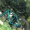 夏休みと自転車