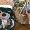伊豆白浜でランチならかわいい雑貨と多肉植物に囲まれた「BAKE CAFE niche(ニーチェ)」