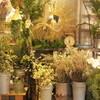 生花のクリスマス花材、入荷してます!