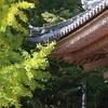 久安寺の秋