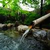 福岡は久留米にある露天風呂付き全て離れの温泉宿「ふかほり邸」に泊まった。【コロナ禍の旅行スタイル】