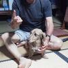 父と、なみちゃんの犬