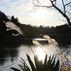 【横浜観光】三ッ池公園をお散歩。写真練習。