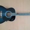 アコースティックギターを買いました。