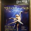 マリインスキー・バレエ来日公演、《白鳥の湖》を観る