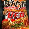 ぼんち ぼんち揚 U.F.O.味 食べてみました