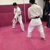 1月27日(土)御茶ノ水での総合格闘技 日本拳法自由会の練習報告