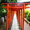 縁結び願掛カヤの木 根津神社 東京都文京区