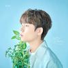 【歌詞訳】Jung Seunghwan(チョン スンファン) / いつでも どこでも(Whenever Wherever)