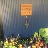 野菜安いです🎵