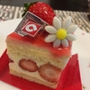 アルカション@マパテのケーキで口の中は早くも春や夏に!
