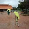 雨の日のマザー牧場の楽しみ方(2013年9月の旅行記)