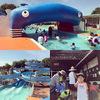 奈良県には楽しいプールと歴史がいっぱい。