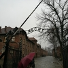 アウシュビッツに行ってユダヤ人差別の恐ろしさを実感した話(行き方等も書いてます)
