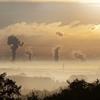 炭素税も導入するか