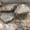 庭から出てきた石の選別をしてみる~どんな石も役に立つ!~