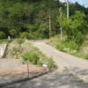 栃洞スナップ(1) ~2007年6月前平~