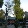 令和二年十二月『生命の言葉』:『徳川家康』 銀杏の見事さと美しさ