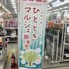 明日!11/2(土)ひとときマルシェinベスト電器八幡本店へ出店! ☆先日の下見へ〜〜