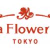 【青山フラワーマーケット】還元率の高いポイントサイトを比較してみた!
