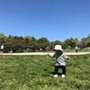 公園が楽しすぎたけど、楽しめない