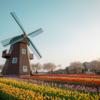 #105 オランダの結婚式の引き出物とは、、、?
