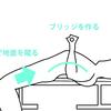 【運動】胸(大胸筋)を鍛えるトレーニング:ベンチプレス
