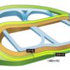 第437R 中山競馬 フラワーC(GⅢ) 参考データ
