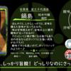 【金曜日の有名銘柄】鍋島 純米吟醸 雄町【FUKA🍶YO-I】