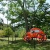 温泉併設のこじんまりとしたキャンプ場(北薩広域公園)