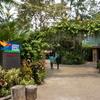 Jurong Bird Parkは地味に暑くて、蚊が多い