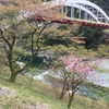 13日目 高知→徳島