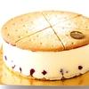 ヨーロッパで修行を重ねたシェフが手がけた美しいケーキの特長