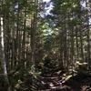 八ヶ岳全山縦走に歩いて挑戦。テント泊で南北駆け抜ける。その2。