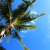 【2017年SFC修行】修行でハワイ?しかもビジネスクラス!~エアチャイナで行くハワイ