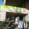 板橋区立熱帯環境植館はミニ水族館が楽しいです