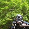 釣リーング キャンプ 山梨〜静岡