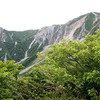 日本海側気候の西端;大山の樹木