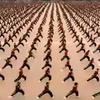 【動画】中国最大の武術学校の1万人団体演武