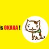 雑貨店チャイハネの猫「おかか」グッズがかわいい!