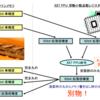 x87 FPU で厳密な単精度演算を行うコスト