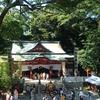 伊豆国三嶋神御子と『海からきた者たち』の正体、ヒントは来宮神『五十猛命』とワダツミの木にあった。