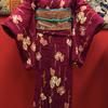 赤紫色地蔦柄小紋×扇に花刺繍開き名古屋帯