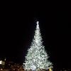 今年もこの季節がやってきた!はこだてクリスマスファンタジー