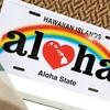立花真由美のお店「ALOHA」が3月NewOpenします!
