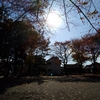 すっかり秋and冬