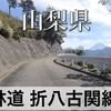 【動画】山梨県 林道 折八古関線