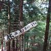 高龍寺ヶ岳へのハイク(その1)登山道前半
