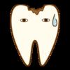歯医者さん自身が、実際に入れる詰め物・被せ物はどれ?